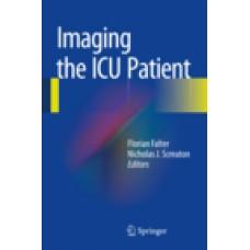 Falter, Imaging the ICU Patient
